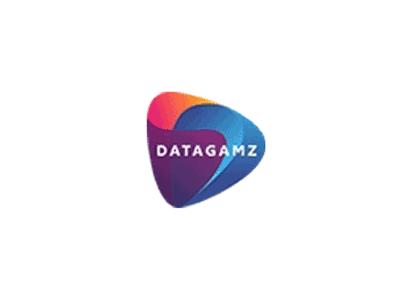 Synergy Partner Datagamz